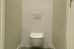 toilet-project